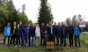 В Архангельске появилась аллея спортивной славы