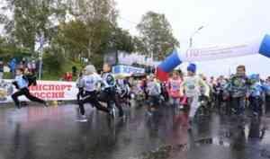 В Архангельске снова стартовал «Кросс нации»